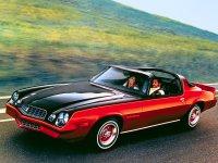 Chevrolet Camaro, 2 поколение [2-й рестайлинг], T-top тарга, 1978–1981