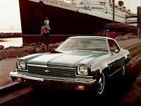 Chevrolet Chevelle, 1973, 3 поколение, Купе 2-дв.