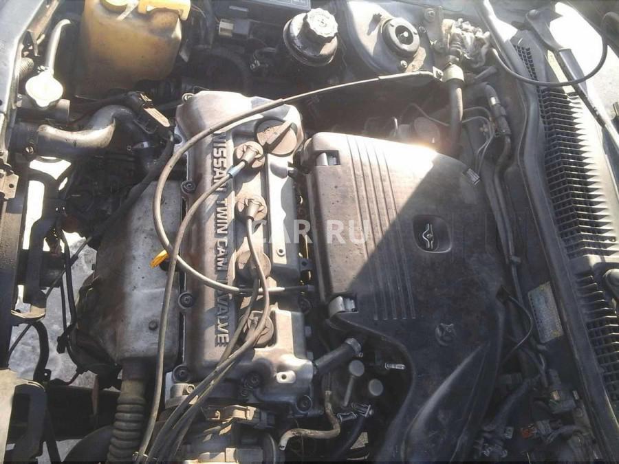 Nissan Pulsar, Абакан
