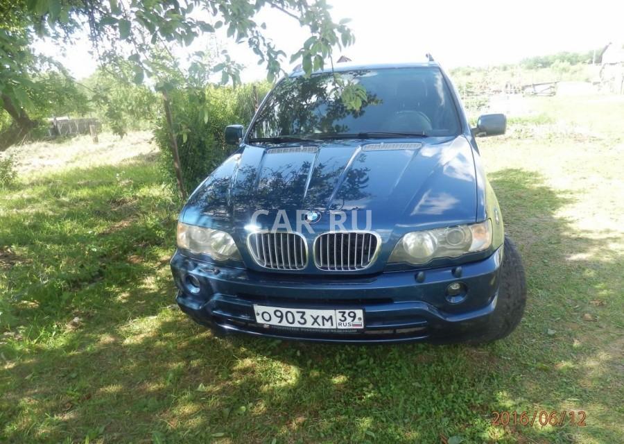 BMW X5, Багратионовск