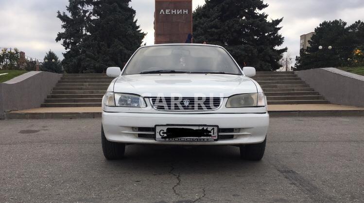 Toyota Corolla, Ростов-на-Дону