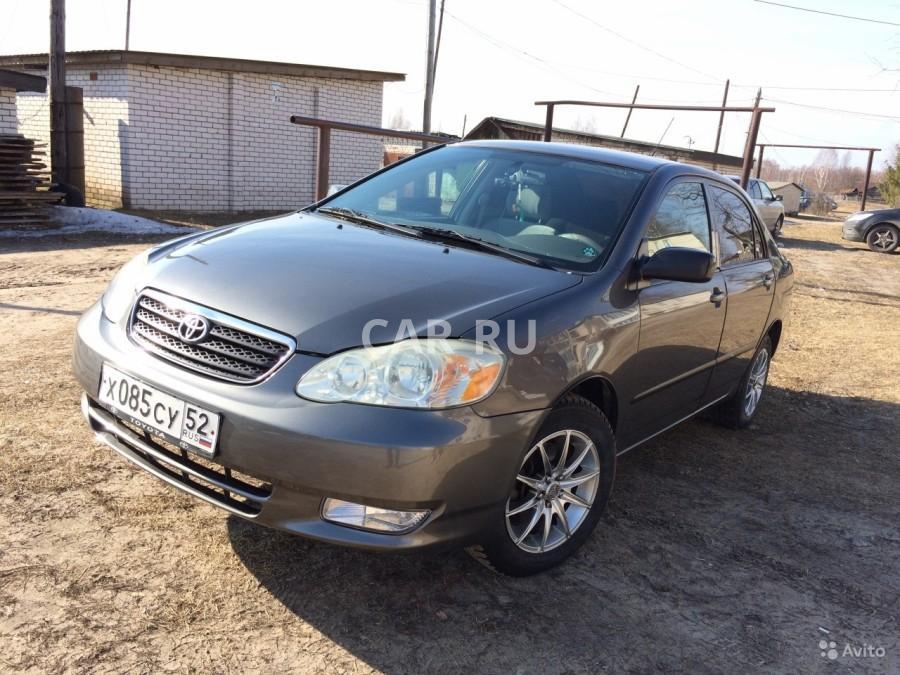 Toyota Corolla, Дзержинск