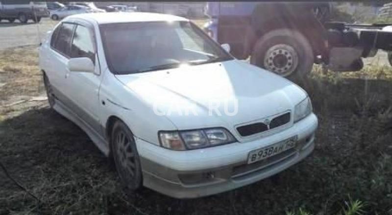 Nissan Primera, Артём