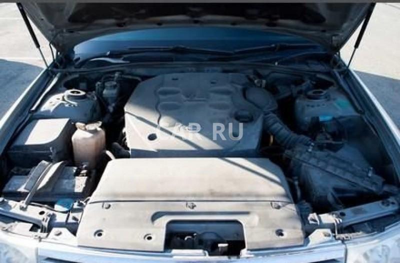 Nissan Cedric, Барнаул