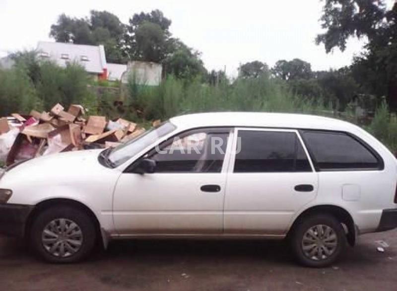 Toyota Corolla, Амурзет