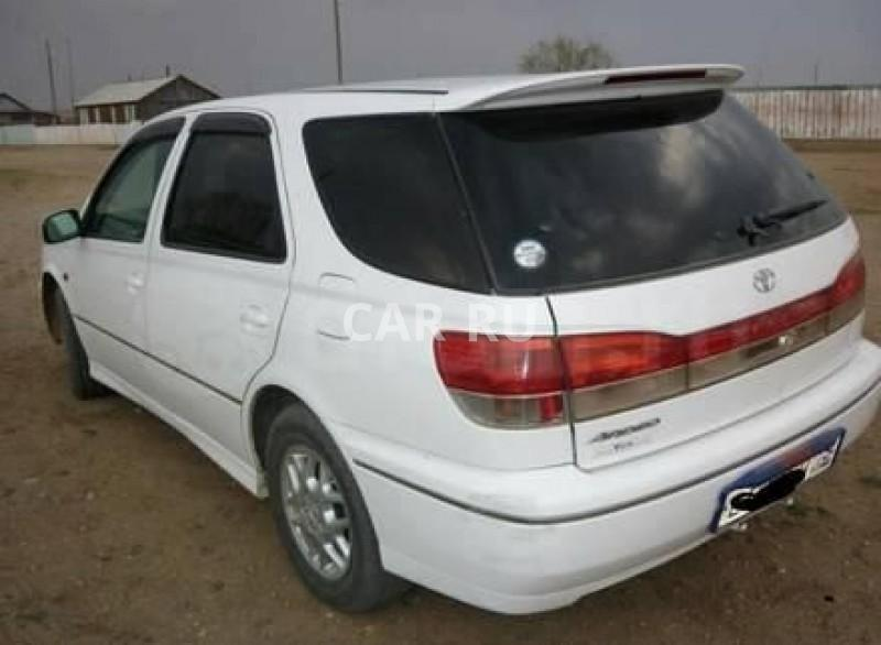 Toyota Vista Ardeo, Агинское