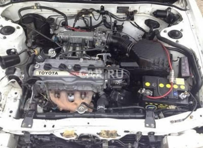 Toyota Carina, Абакан