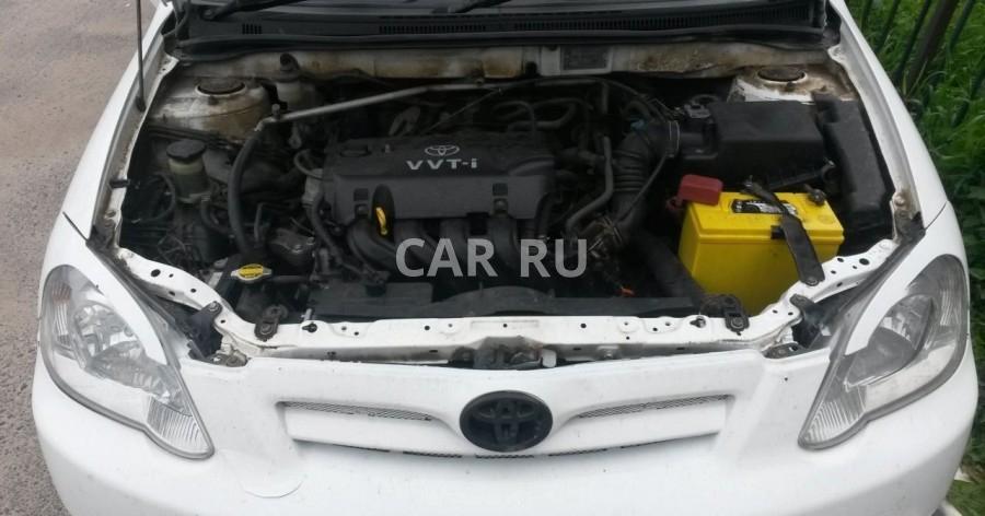 Toyota Corolla, Белгород