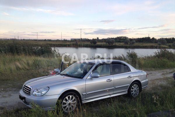 Hyundai Sonata, Арти