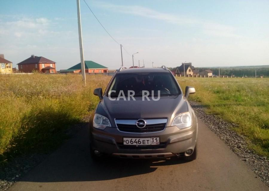 Opel Antara, Белгород