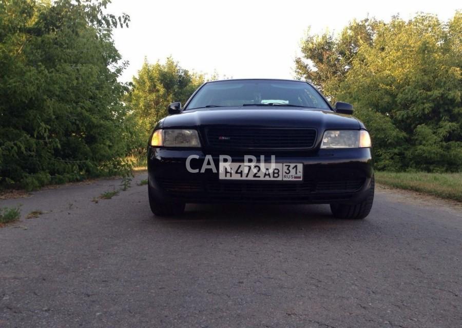 Audi A4, Белгород