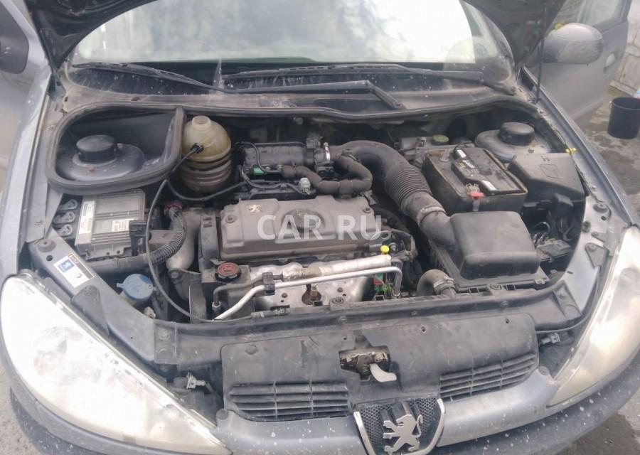 Peugeot 206, Асбест