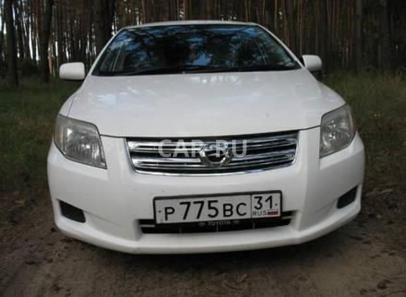 Toyota Corolla Axio, Белгород