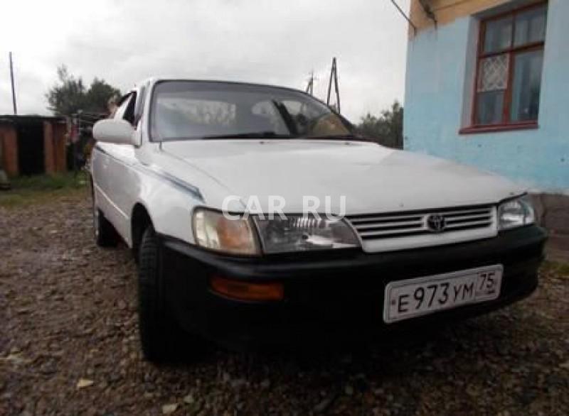 Toyota Corolla, Балей
