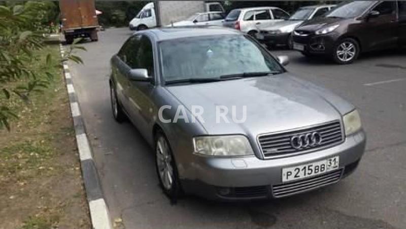Audi Quattro, Белгород